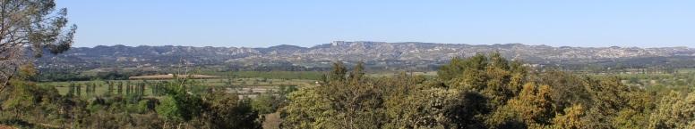 Mas Coste Haute Hôte Chambre Maison Paysage Alpilles Hébergement Tourisme